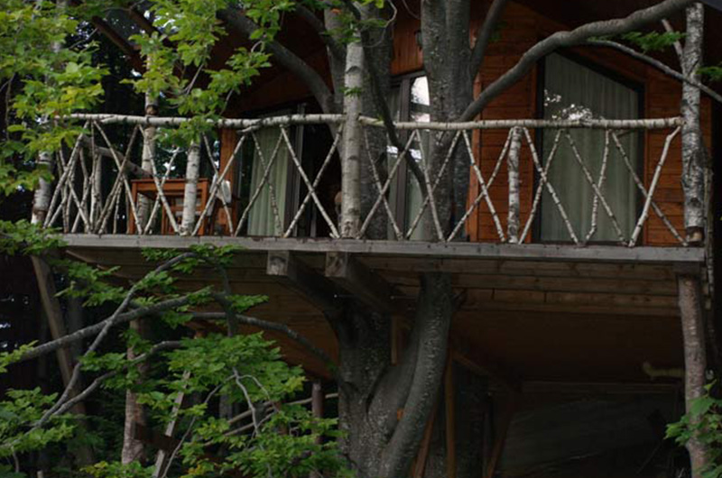 harmonie-rowalk-tree-house-romania